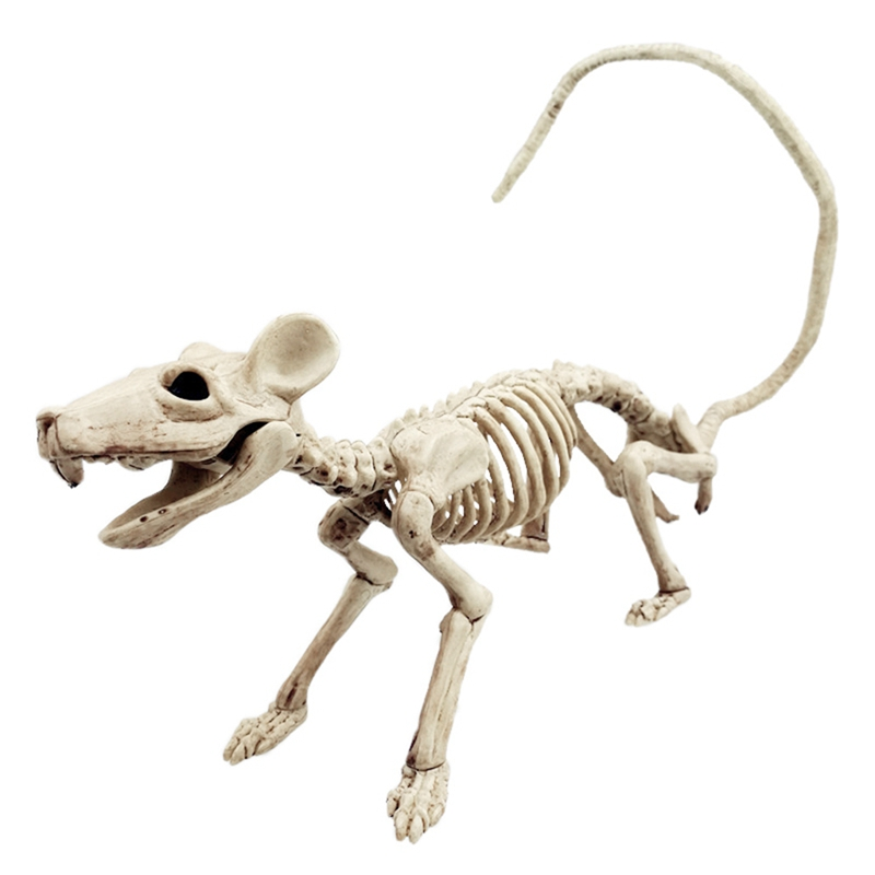 Halloween Skeleton Horror Skeleton Tool Holiday Party Accessories Room Escape Holiday Tricky Terror Halloween Gadget Prop
