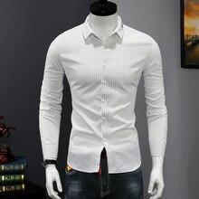 Quality Button Down Shirts Men's Fashion Business