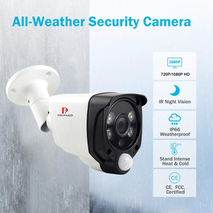 Image 4 - HD 1080P 2MP 4 in 1 PIR Function Alarm Camera Outdoor IR Waterproof CCTV Outdoor Motion Detection Security Camera AHD CVI TVI