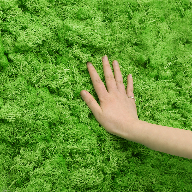 20/40g Artificial Green Plant Eternal Life Moss Grass For Home Garden Decoration DIY Flower Material Micro Landscape Accessories