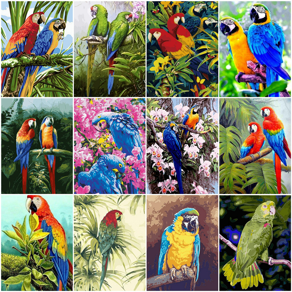 HUACAN Paint By Number Parrot Drawing On Canvas HandPainted Painting Art Gift DIY Pictures By Number Animal Kits Home Decor