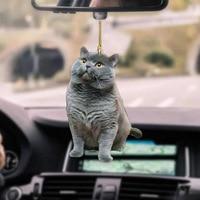 BANANA PUG SLEEPING CAR HANGING ORNAMENT  3
