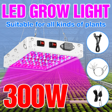 Luz LED de cultivo de espectro completo, 300W, 500W, 220V, lámpara Fito para plantas de interior y invernadero de flores, caja de tienda de cultivo, 110V, enchufe para UE, EE. UU., Reino Unido