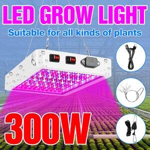 Image 1 - Pełne spektrum 300W 500W oświetlenie LED do uprawy 220V lampa fito dla rośliny doniczkowe i kwiat szklarnia Box 110V ue US UK wtyczka