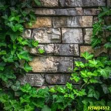 Laeacco wiosna zielona winorośl stary kamień ułożone ściany dekoracje na domowe przyjęcie scena fotografia tła Photo Backdrops dla Photo Studio