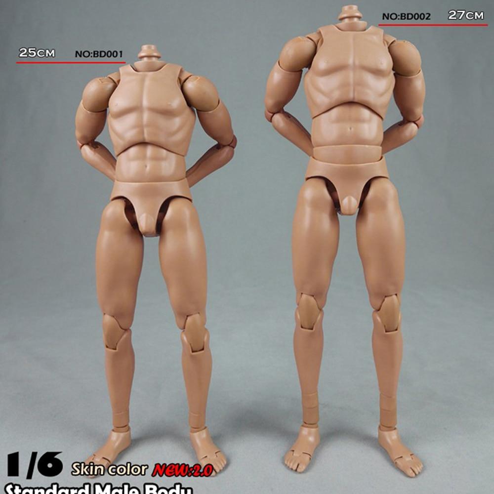 "COOMODEL BD001 1//6 Standard Male Body Model Narrow Shoulders For 12/"" Head"