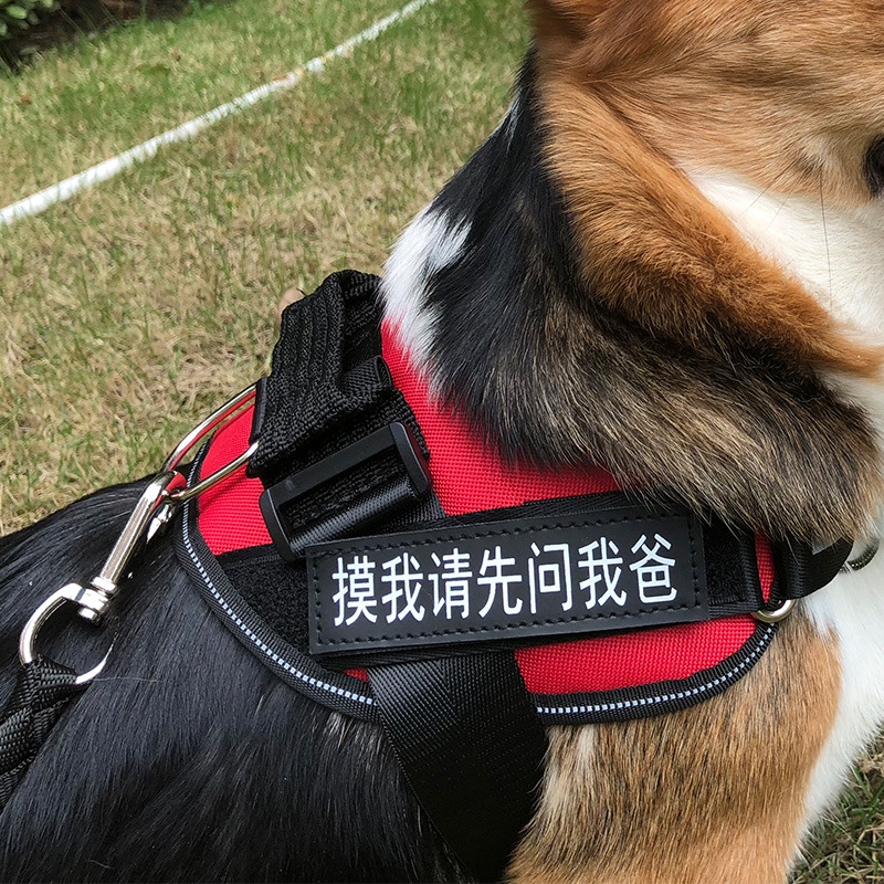 Dog Chest Golden Retriever Hand Holding Rope Dog Rope Lado Suspender Strap La Teddy Corgi Unscalable Dog Dog
