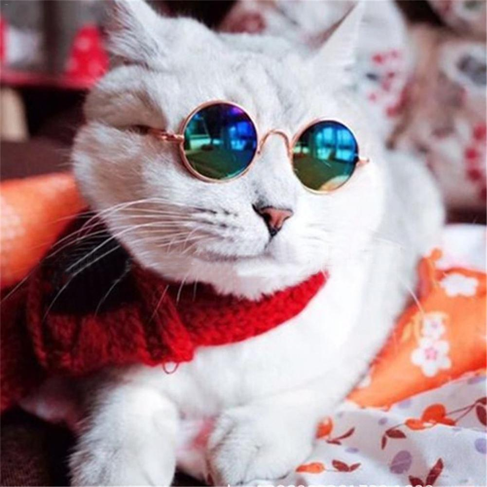 1pc Pet Sunglasses Fashion Summer Dog Cats Sunglass Eye-Protection Glasses For Puppy Kitten Grooming Products Pet Accessories