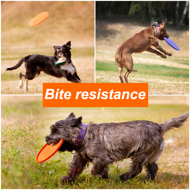 Safe Elastic Durable Tear-Resistance Floatable Frisbee For Many Hours Of Playtime . 3