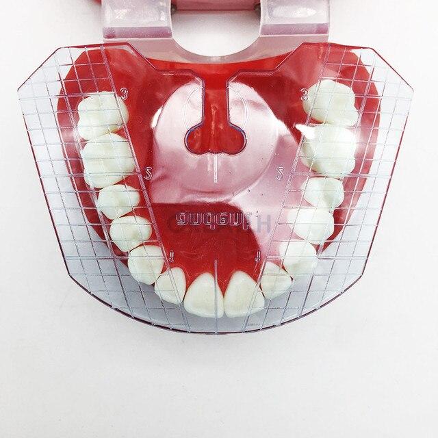 1pcs שיניים מעבדת שיניים מדריך צלחת שיניים הסדר על בעבודת שנן