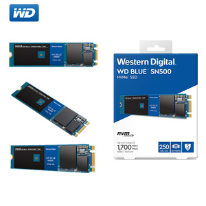 WESTERN DIGITAL WD BULE 500GB 250GB SSD M.2 2280 NVMe PCIe Gen3*2 Internal Solid State Drive SN500 For PC Laptop NoteBook