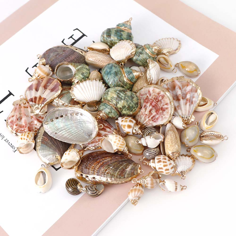 5pcs 19-47mm Crafts Handmade Seashell For necklace Bracelet Shells choker DIY Home Decoration Jewelry Finding