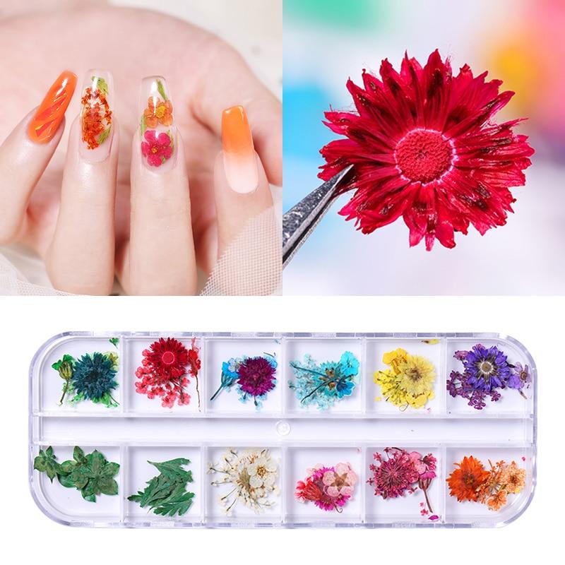 1 Box 3D Dry Flowers Nail Art Decoration 12 Grids Petal Flower Beauty Natural Floral Nail Decoration for Nail Art Design