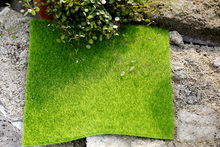 Simulation Green Lawn Meadow Lichen False Moss Miniature DIY Photography Shooting Background Adornment Photo Studio Accessories