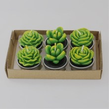 12pcs Smokeless Aromatherapy Craft Candle Creative Confession Simulation Succulent Cactus Candle Home Decor Candle