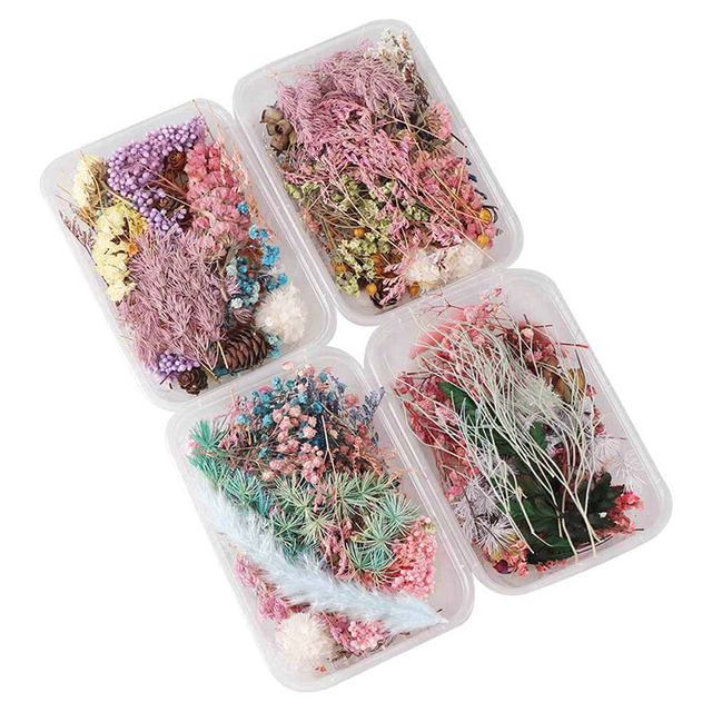 1 Box Random Mix Style Dried Flowers Decoration Natural Floral Sticker Dry Beauty Nail Art Decals Epoxy Mold DIY Filling Jewelry 4
