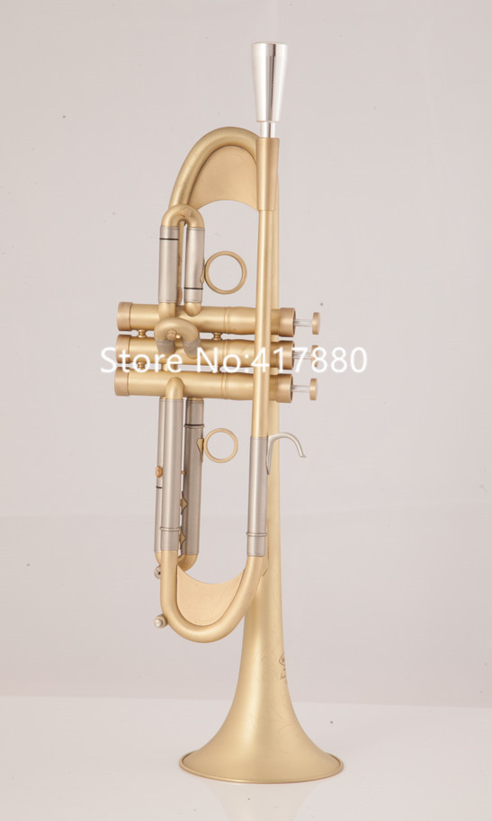 New Arrival Falling Tune Bb Trumpet TR-305G Mouthpiece Brass Musical Instrument With Case, Glover Free Shipping