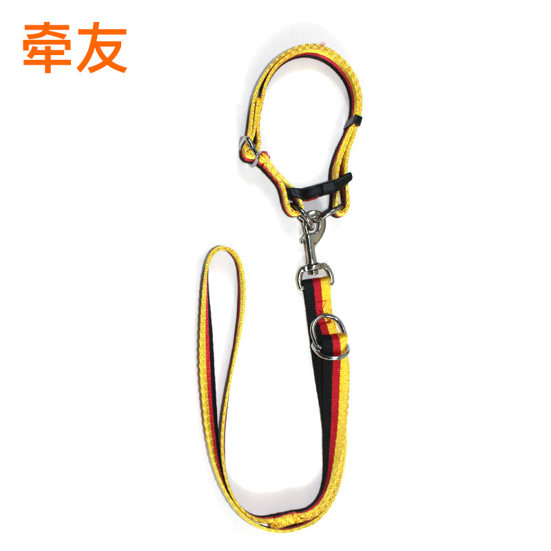 New Products De National Flag Dog Traction Series Medium Large Dog Traction Belt Hand Holding Rope Outdoor Traction