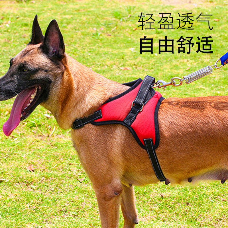 Dog Thoracic Wrangler De Suspender Strap Dogs Explosion-Proof Breathable Wrangler Hand Holding Rope Summer Rushed Unscalable Lar