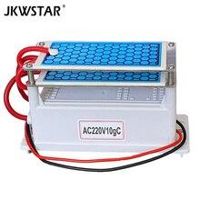 220V 10g Portable en céramique générateur dozone Double intégré longue durée en céramique plaque ozonateur air eau purificateur dair