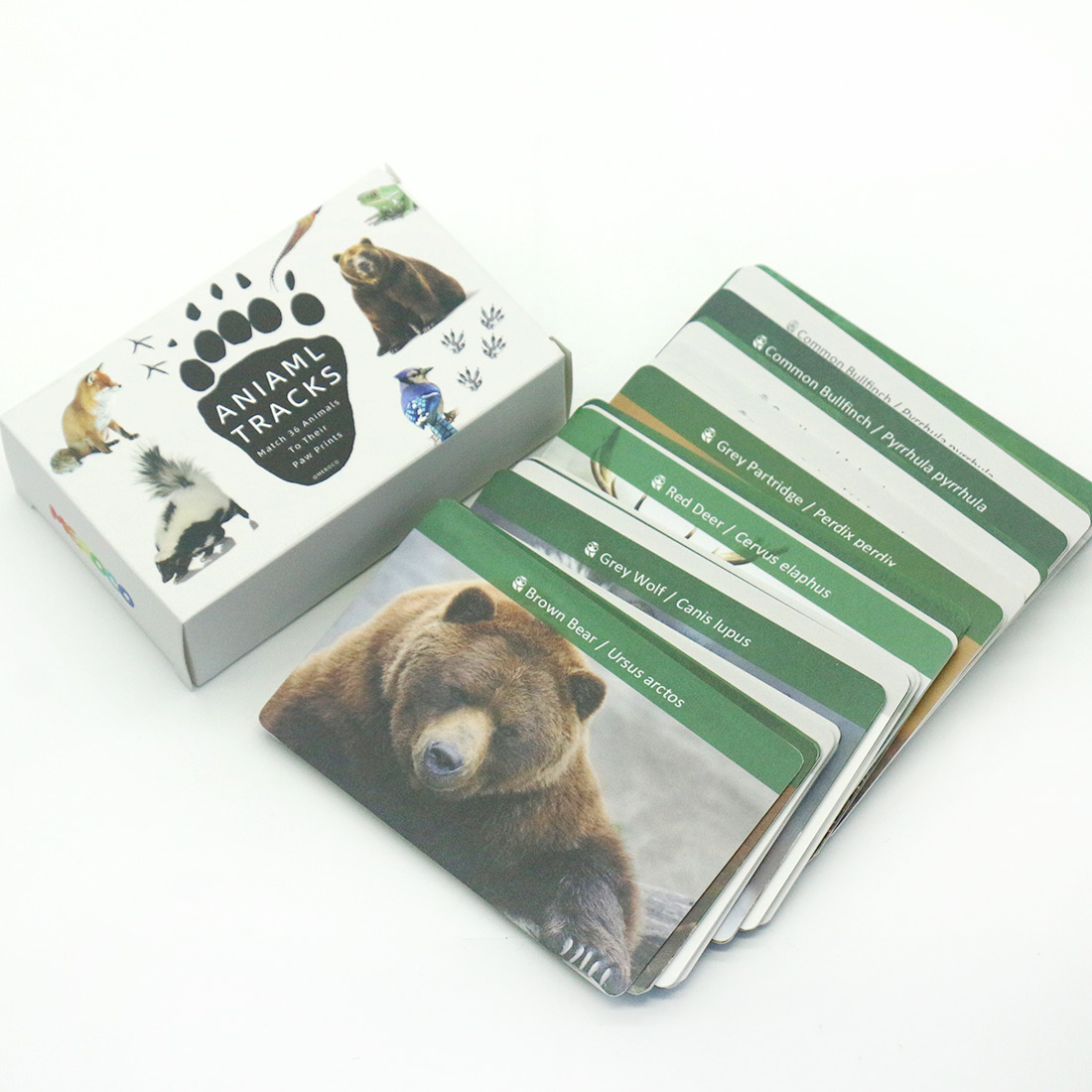 Montessori Material Animals  Footprints Flash Cards Montessori English Learn Card Early Educational Toy Memory Game for Children 1