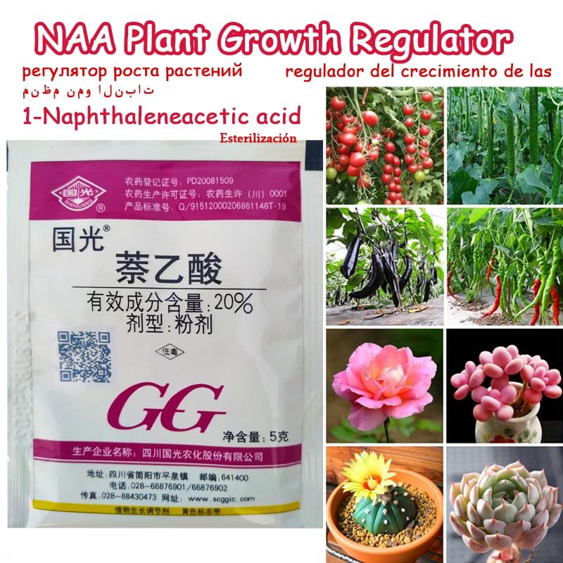NAA 1-naphthylacetic acid Regulator Promote Plant Growth Recovery Germination Vigor Aid Fertilizer Hormone Bonsai Garden(China)