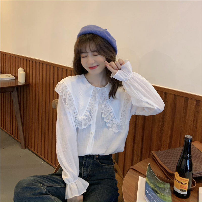 Hc1b0c23dcc5a4c938f3ffe10353b0f95X - Spring / Autumn Butterfly Lace Collar Long Sleeves Loose Solid Blouse