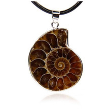 FYJS Unique Jewelry Silver Plated Irregular Shape Ammonite Reliquiae Pendant Black Rope Chain Necklace