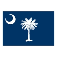 V280 Palmetto Tree South Carolina Flag Palm Vinyl Sticker Decal Choose Size!