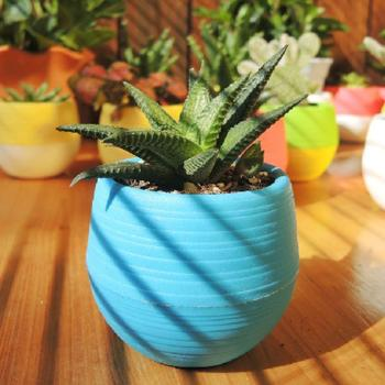 Creative Eco-friendly Colourful Mini Round Plastic Plant Flower Pot Garden Home Office Decor Planter Plant Flower Pot Planter image