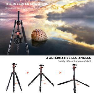 Image 4 - ZAYEX trípode profesional para cámara de viaje, monopié de aluminio ligero y portátil para cámara digital SONY Canon DSLR