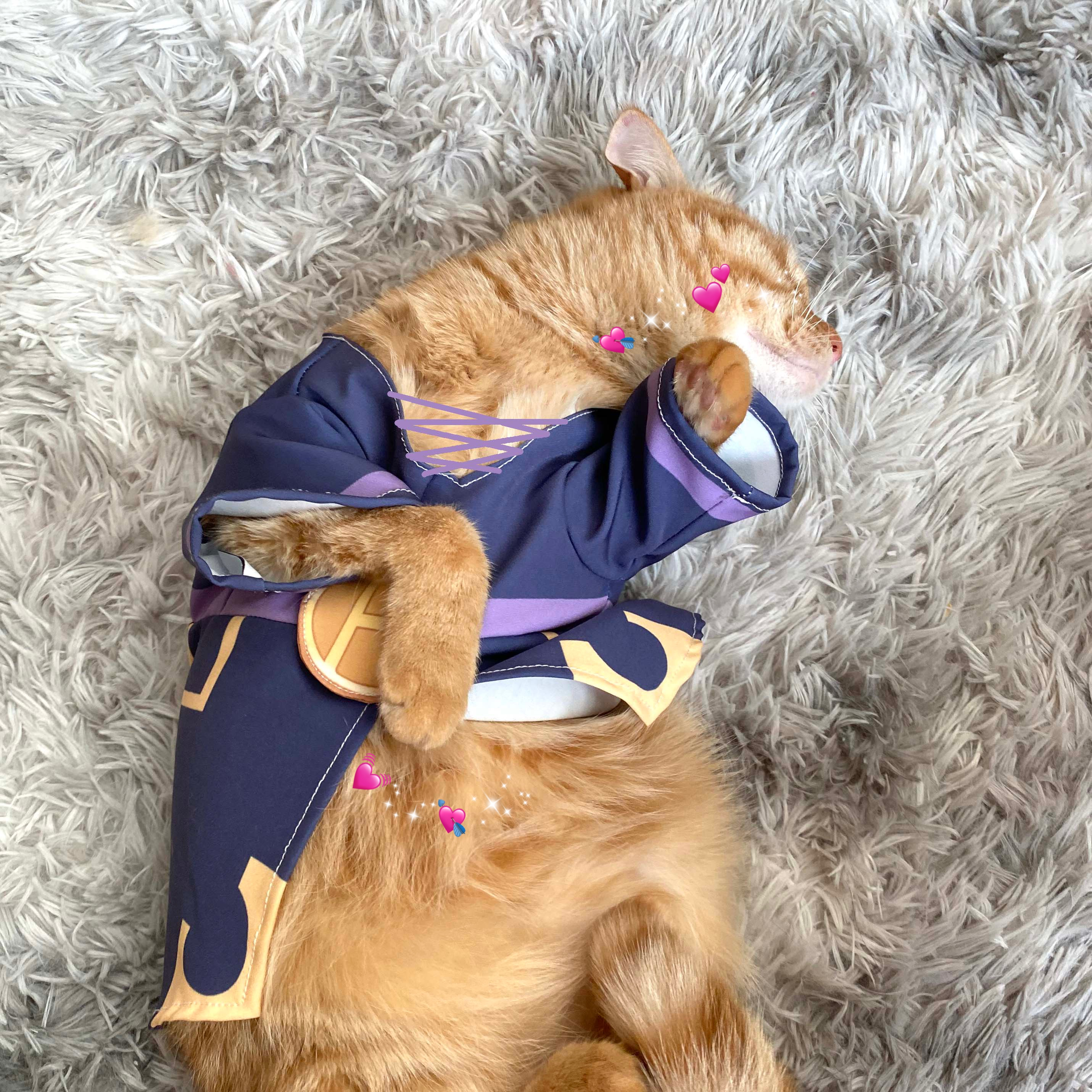 JoJo's Bizarre Adventure JOJO's Wonderful Adventure Pet Supplies Leo Apaki Cat Clothes Tea Brother Small Dog Costume Dress Up