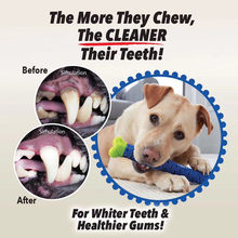 Atacado de borracha kong brinquedo do cão interativo filhote de cachorro mastigar brinquedos kog cão acessórios kog para cão escova de dentes vara dropshipping centro