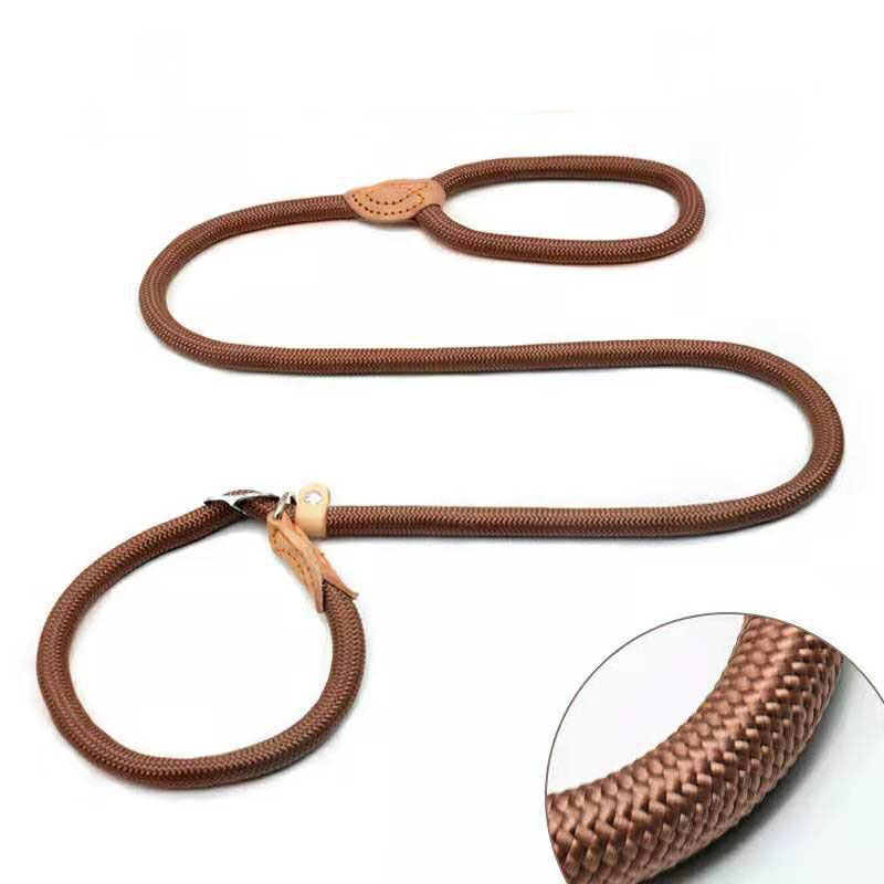 dog leash brown
