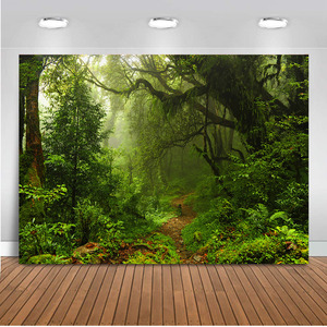 Image 5 - Mehofoto ג ונגל יער צילום תפאורות אביב תא צילום רקע אולפן ספארי רקע מסיבת ויניל בד חלקה 812