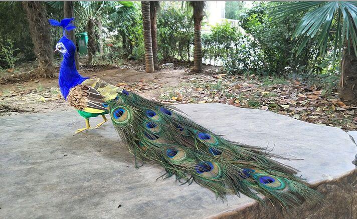Vraie vie oiseau plumes oiseau modèle environ 50cm paon tournage prop décoration cadeau h1289