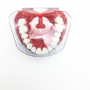 Image 5 - 1pcs שיניים מעבדת שיניים מדריך צלחת שיניים הסדר על בעבודת שנן