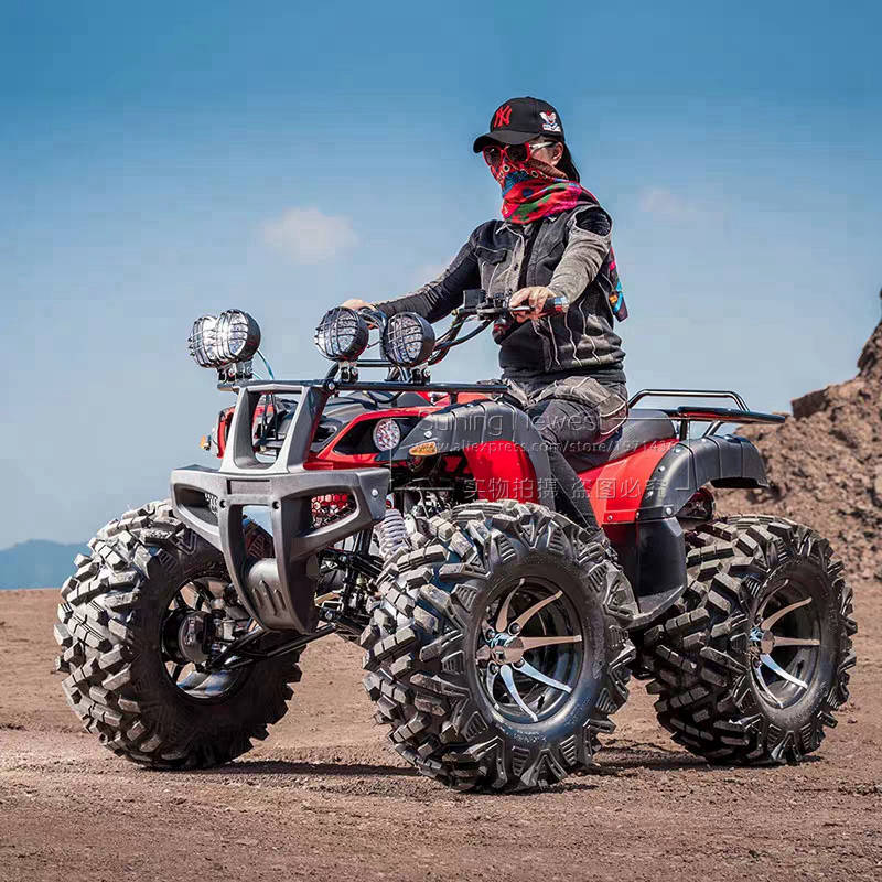 250CC Engine Gas Powered Motorbike 4x4 ATV Racing Go Kart Car Beach Buggy Amusement Park Adults Ride Moto Motorcycle Quad Bike