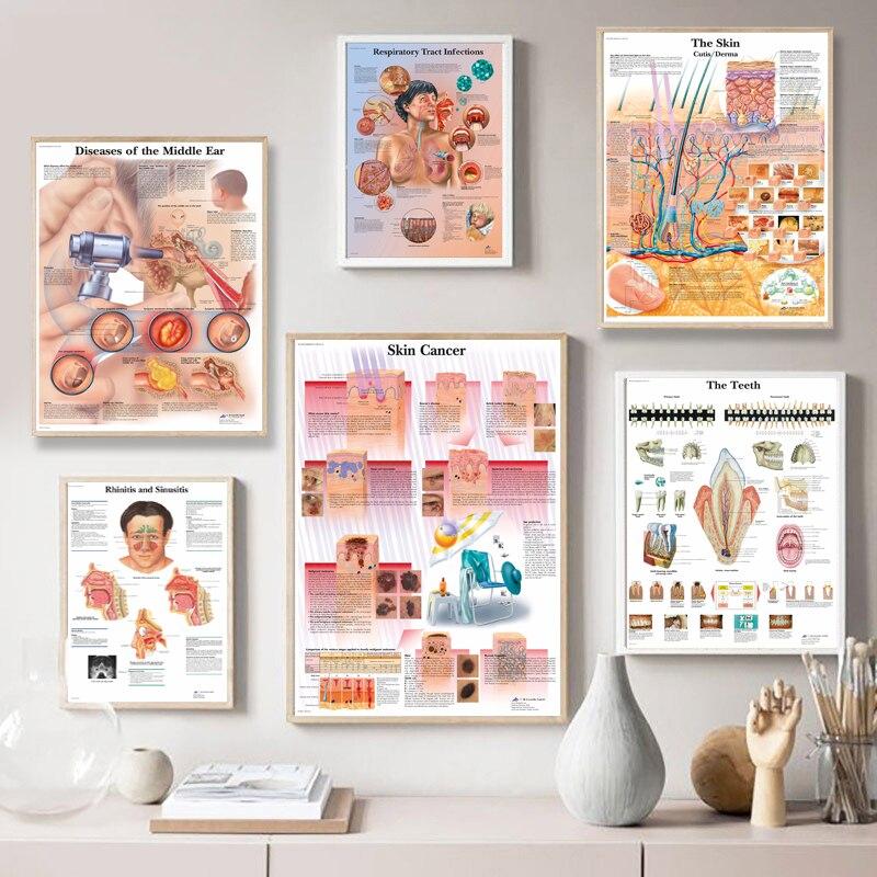 Карта по шелку настенные картины для медицинского образования, офиса, дома, Анатомия человека мышцы Системы тела художественный постер картина