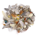 50 шт./упак. смешивания натуральные перья фазана для рукоделие