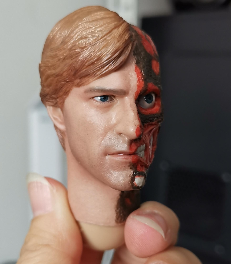 1/6 Scale  Double-sided man Harvey Dante Head with Rotface for 12''Figures Bodies Accessories DIY