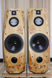 Speaker Standing Bass Floor Accuton Tweeter Midrange 2 13-Inches Hi-End 212 212