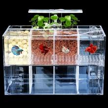 Betta Fish Tank Guppy Breeding Isolation Box Acrylic Fish Tank Transparent Small Fish Aquarium Desk Decoration 918 usb powered mini aquarium fish tank white transparent