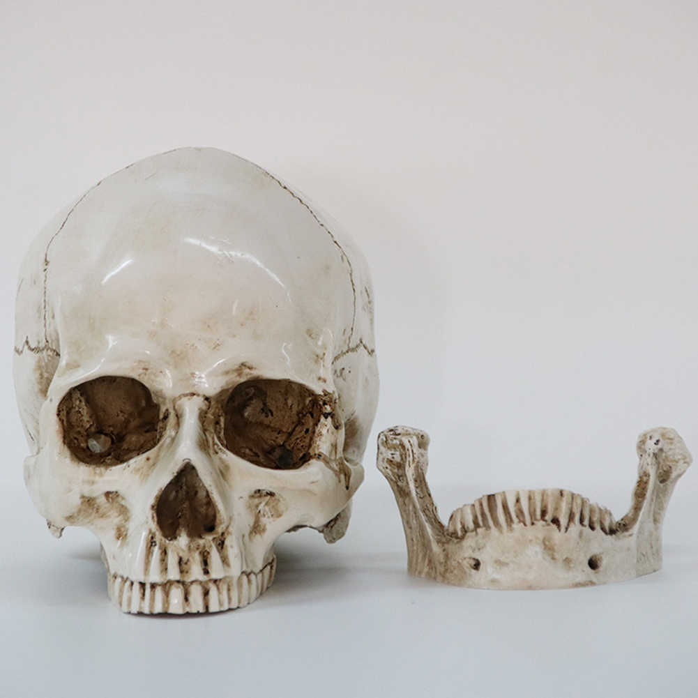 אדם ראש שרף העתק מודל רפואי באיכות גבוהה דקורטיבי קרפט גולגולת חיים גודל 1:1 ליל כל הקדושים עיצוב הבית