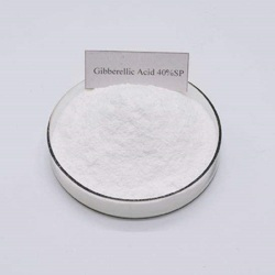100g de ácido giberellico ga3 40% polvo soluble giberellin