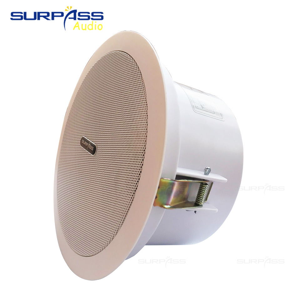 Coxial Ceiling Speakers With Back Cover Woofer and Tweeter Unit Stereo Sound Passive Ceiling Speaker Plastic Frame Roof Horn