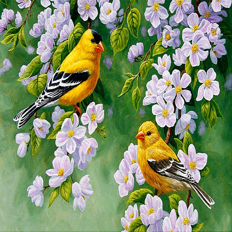 5D DIY Diamond Painting Birds Full Round Drill Animals Embroidery Crystal Mosaic Cross stitch Adults Art New Home Decor Gift in Diamond Painting Cross Stitch from Home Garden