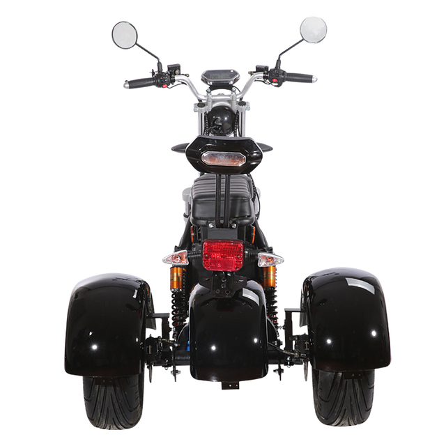 3 Wheel Citycoco Electric Motorcycle Electric Tricycles Adult Icluding EU Customs No Taxes 60V 20ah Removable Lithium Battery 4
