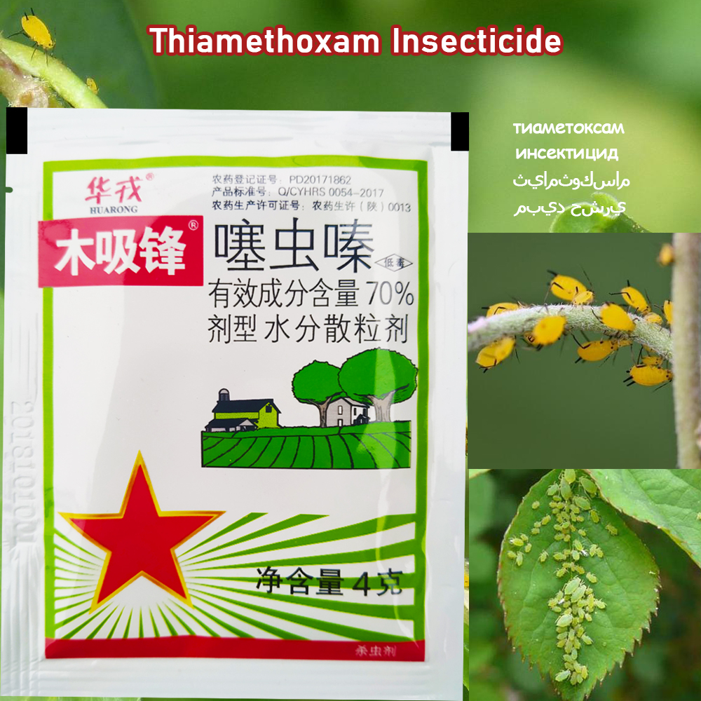 4 G Thiamethoxam Insecticide Kill Insect Stinging Pest Aphid Medicine Pesticide Protection Garden Plant