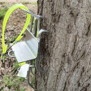 Image 3 - Edelstahl Fünf Krallen Baum Klettern Werkzeug Pol Klettern Spikes für Jagd Beobachtung Picking Obst Starke Last Kapazität